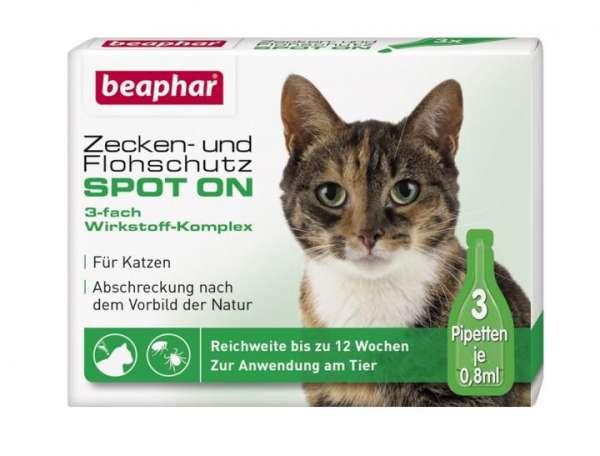 zeckenschutz katze zeckenmittel spot on zeckenbekämpfung katzen
